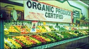 organic_food - Copy